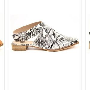 Shoes - Snakeskin Loafers
